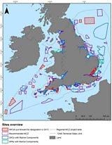 Marine Conservation Zones