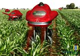 Robots swarming across our fields- is this the future of farming?