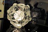 Using the Diamond Light Source to study viruses and bacteria