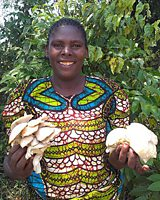 Forests and Mushroom Farming