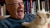 Meet the robotic cat for the elderly