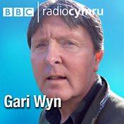 Gari Wyn