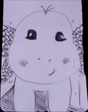 dragon-lavender.jpg