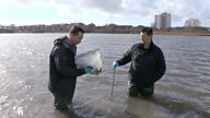 Rhys Jones's Wildlife Patrol - Just when you thought it was safe to go back in the water....