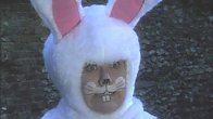 Dibley's Easter Bunny