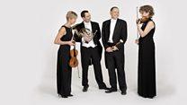 Brahms Experience Festival Appearances 2014-15