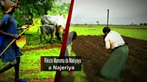 Yunkurin magance rikicin Fulani da manoma a Najeriya
