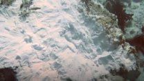 Kapal Inggris rusak terumbu karang di Raja Ampat