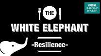 white_elephant_resilience_13_YT.jpg