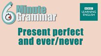 6mingram_li_11_present_perfect_ever_never.jpg