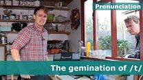 Tim's Pronunciation Workshop part 23- weblink image