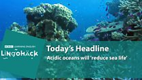 Lingohack: 6 December: Oceans: Image with headline