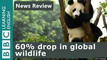 Extinction_News_Review_YOUTUBE...
