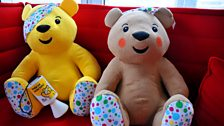 Image for Pudsey Pays Out - Brain Injuries