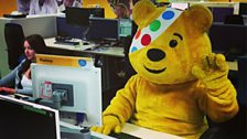 Pudsey at his desk 2