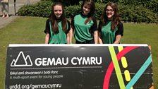 Gemau Cymru 2013
