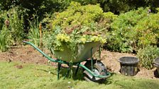 Image for MacAulay and Co. Gardening Tips - Buying a wheelbarrow and winter tree pruning