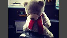 Greg In Glasgow - The Adventures of Ryan (Bannatyne) Bear