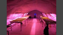 Underground Farms