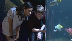 AlunaGeorge visit the aquarium