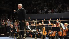 Daniel Barenboim addresses the Ring audience