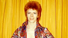 An Introduction to Ziggy...