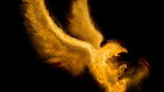 Stravinsky: The Firebird Suite