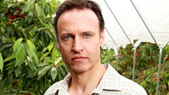 Andrew Wincott plays Adam Macy