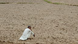 Image for Indian Farmer Suicides