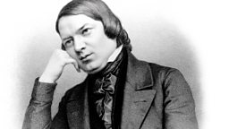 Image for Robert Schumann and the Music of the Future