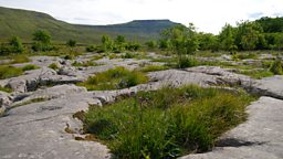 Image for Yorkshire Dales