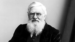 Image for Alfred Russel Wallace