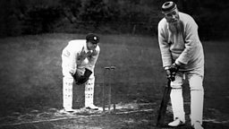 Image for Cricket and the English Hero