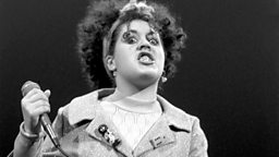 Image for Who Is Poly Styrene?