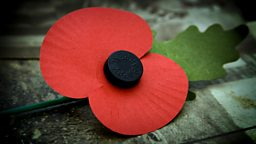 Image for Remembrance