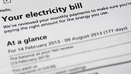 Image for Electricity Prices: A Shock to the System?
