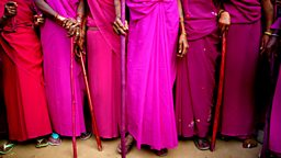 Image for The Pink Sari Revolution