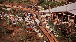 Image for The Jonestown Massacre