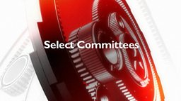 Image for Internet and Video Games Committee