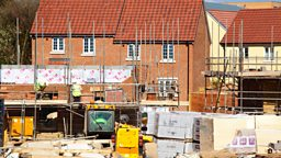 Image for Housebuilding and landbanking, foie gras, consumer trends for 2014