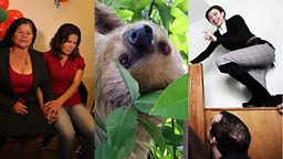 Image for Reunions, Troublemakers and Sloths