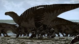 Iguanodon migration