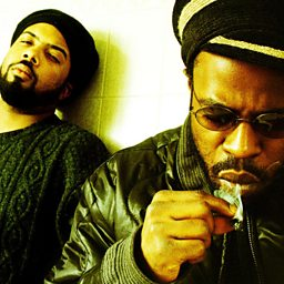 The Seed (2.0) (feat. Cody ChesnuTT)
