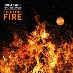 Fighting Fire (feat. Jess Mills)