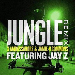 Jungle (Remix) (feat. JAY Z)