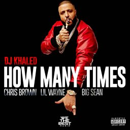 How Many Times (feat. Chris Brown, Lil Wayne & Big Sean)