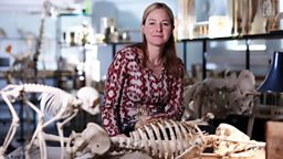 Find out more about our presenter Dr Alice Roberts