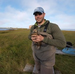 Matt Sexson with a female Eider duck