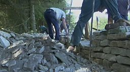 ADAM'S FARM DRY STONE WALLING