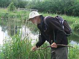 Nick Davies at Wicken Fen
